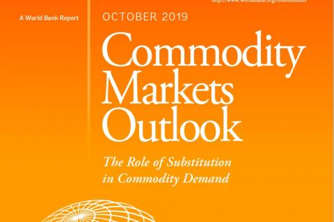 Commodity Markets Outlook
