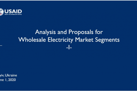 Analysis and Proposals for Wholesale Electricity Market Segments